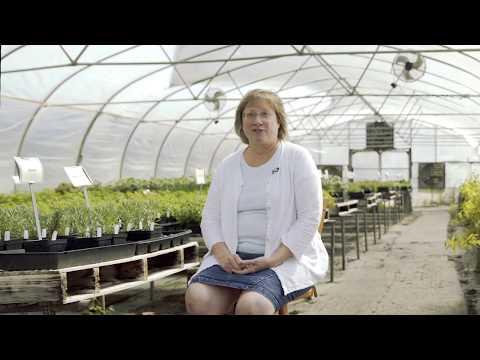 Authorize.net Customer Success Story - The Tasteful Garden