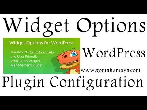 Widget Options WordPress Plugin Setting 2018