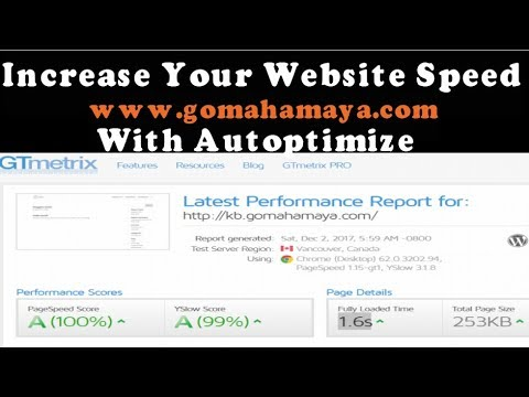 Autoptimize Settings WordPress Plugins Tutorial | Increase WordPress Website Speed