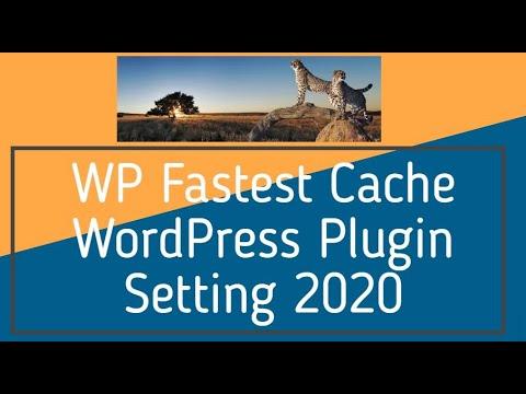 WP Fastest Cache WordPress Plugin Setting 2020