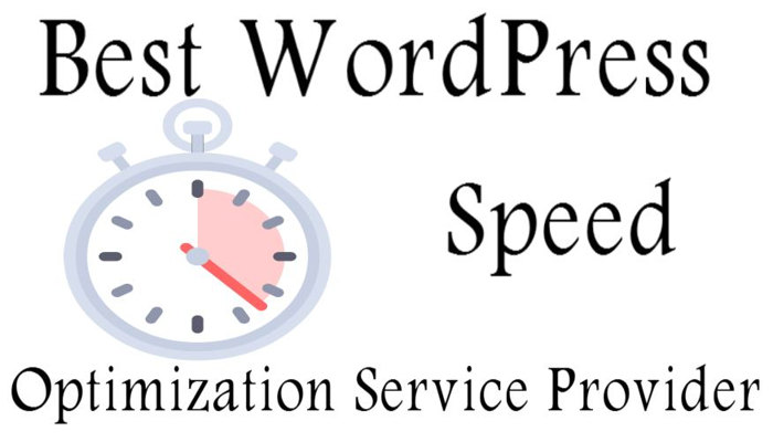 Best WordPress Speed Optimization Service Provider