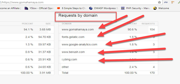 prefetch dns requested by domain finding out process