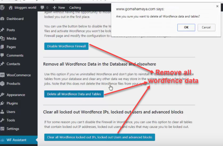 WF Assistant _Remove data
