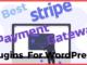 Best Stripe Payment Gateway Plugins For WordPress