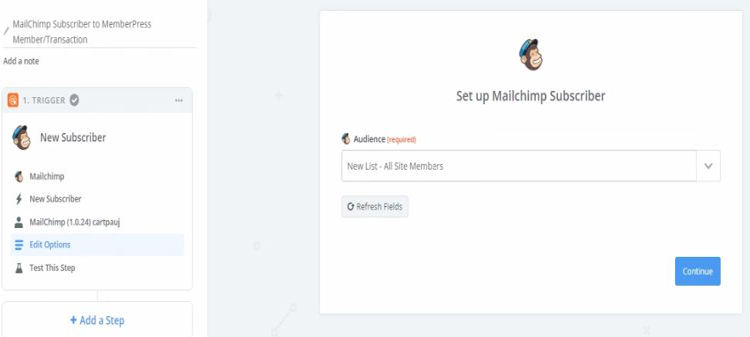 Set up mailchimp subcriber with ziper