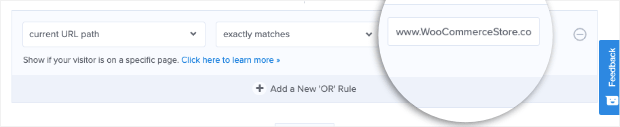 Enter specific websiteto display rules optinmonster