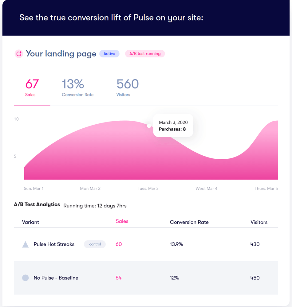 Landing Page sale Converter Visitor Screenshot