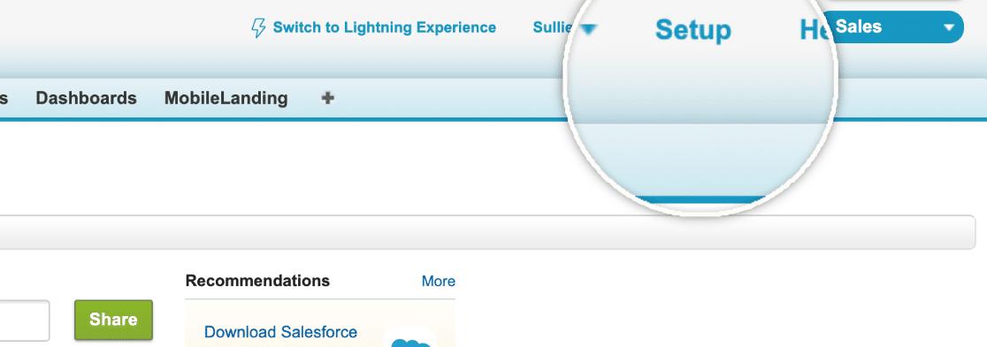 Salesforce Setup Option