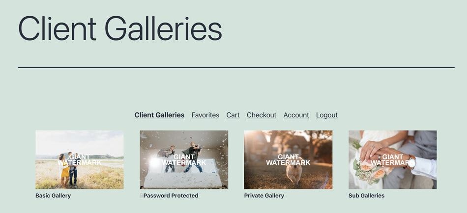Client Galleries Overview