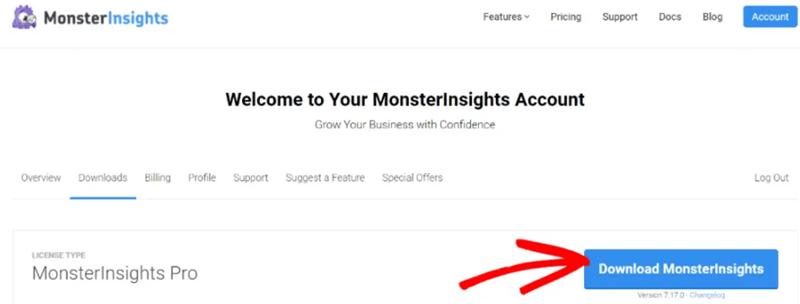 Download MonsterInsights Pro plugin