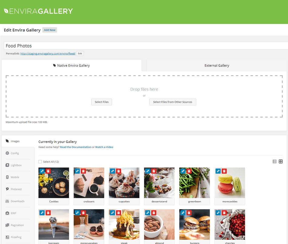 Envira gallery lite post type overview screen wordpress plugin
