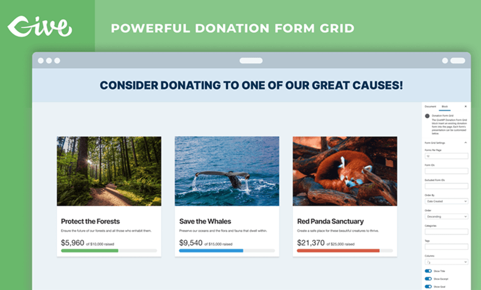 GiveWP powerful donation form grid