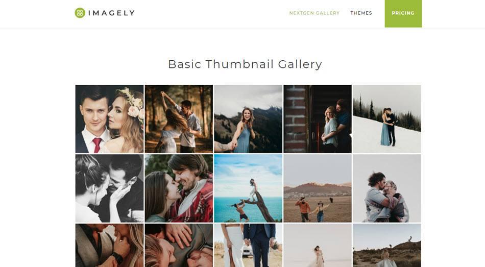 Imagely nextgen gallery thumbnail gallery wordpress plugin