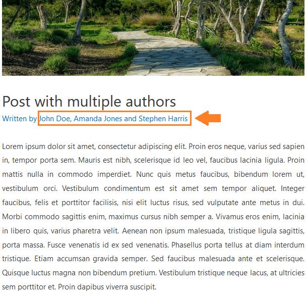 Molongui authorship author box guest author and co author