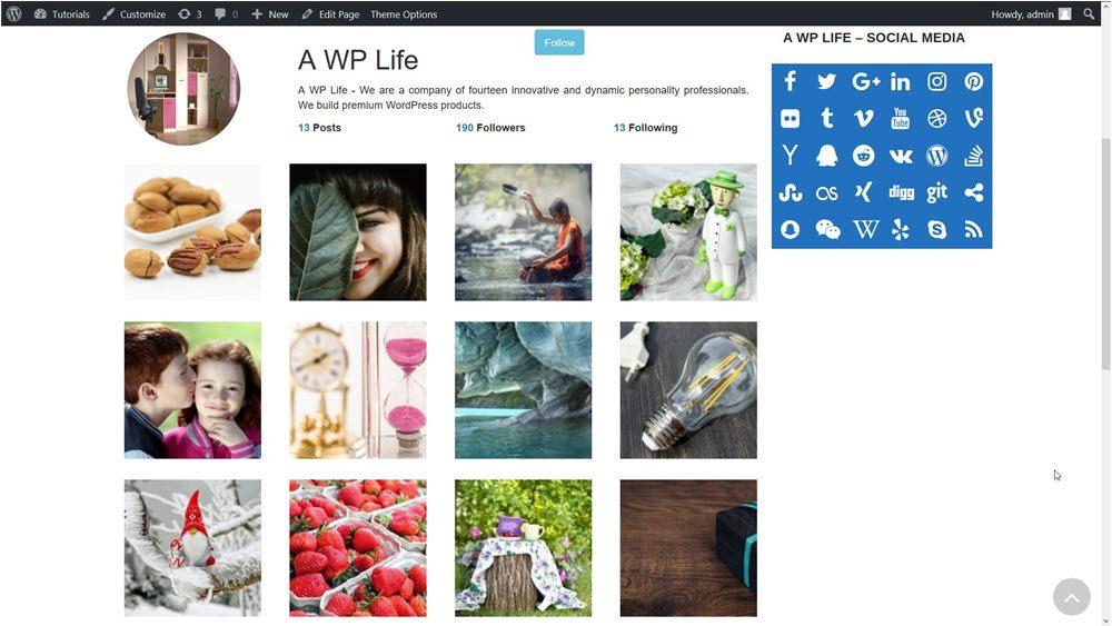 stylish profile gallery wordpress gallery custom profile insta style gallery preview