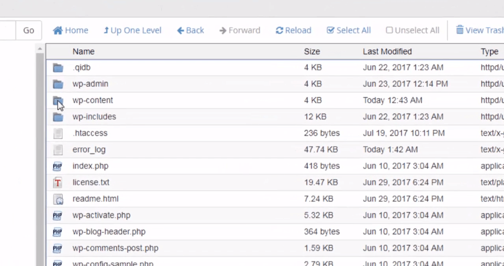 File manager wp content
