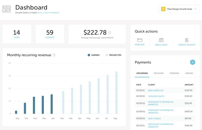 Flyzee Growth Suite growth dashboard