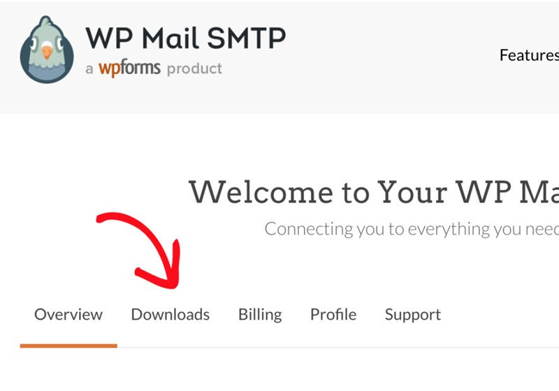 WP Mail SMTP Downloads