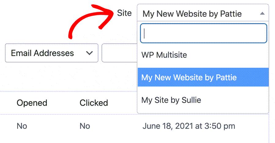 Multisite Email Log In WordPress