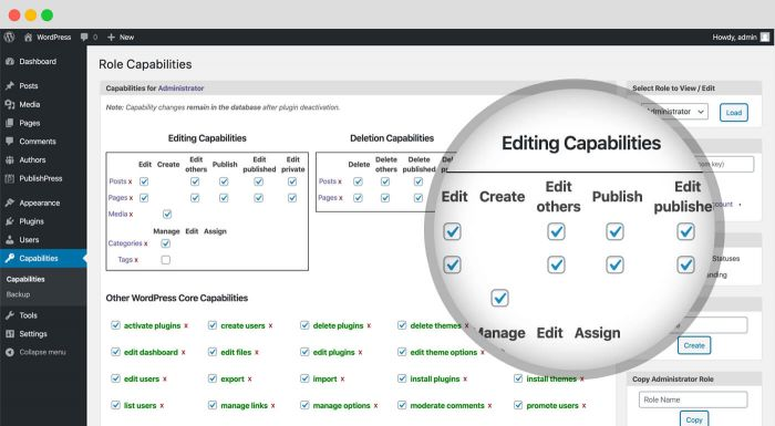 Customize And Control User Role Capabilities Or Permissions