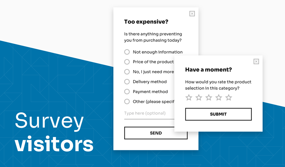Survey Popups For Visitor Demo