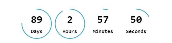 Widget Countdown Timer Front end Priview