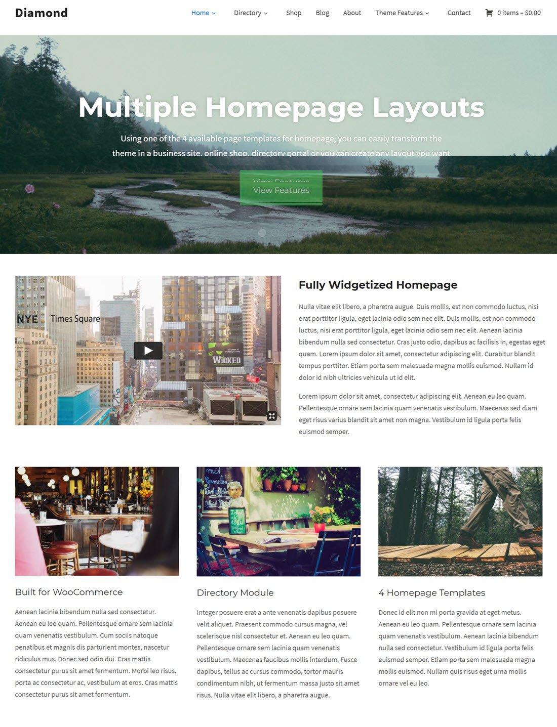 Diamond Directory Theme For WordPress ScreenShot