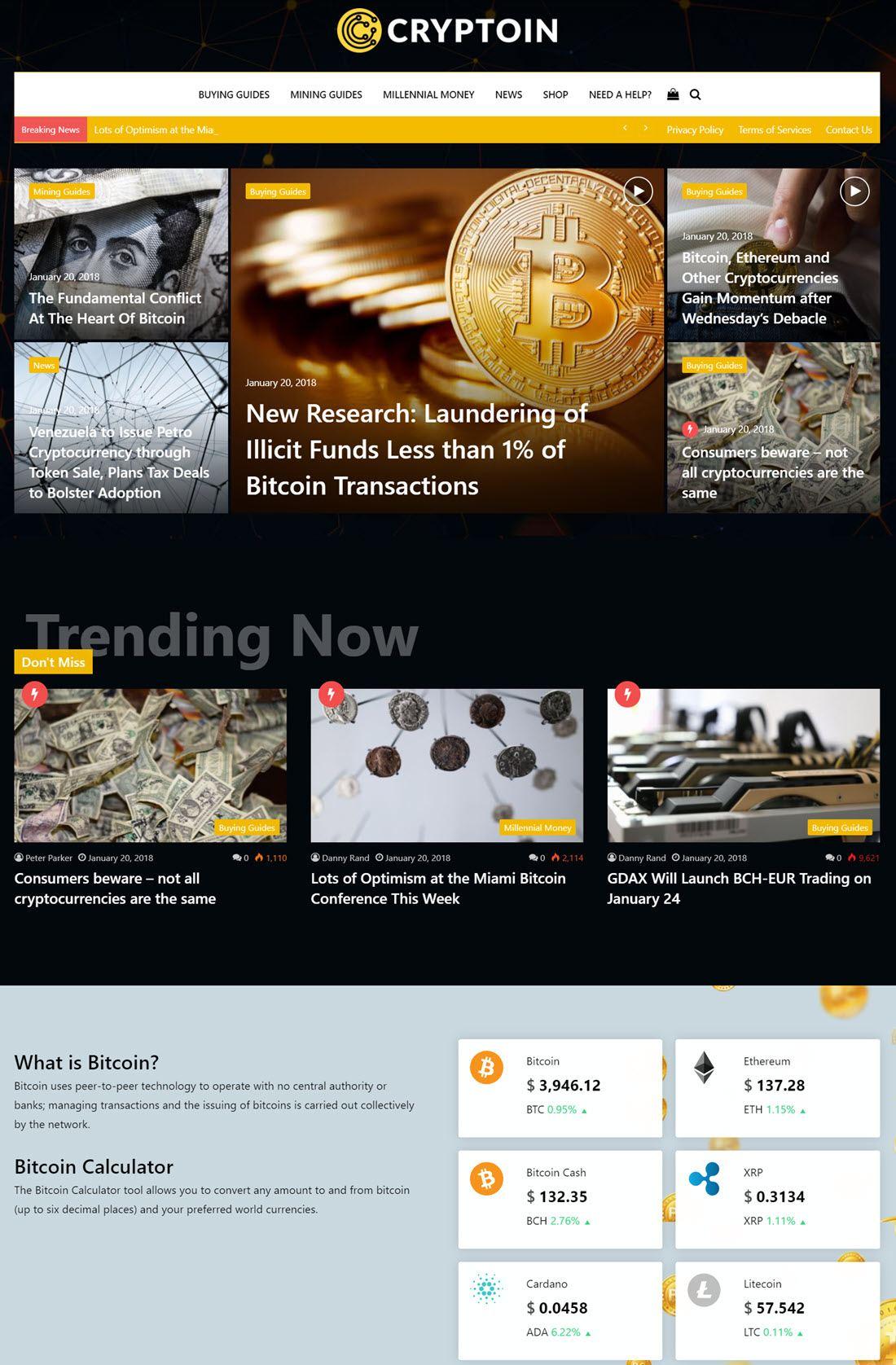 Jannah Newspaper Magazine News BuddyPress AMP Screenshot